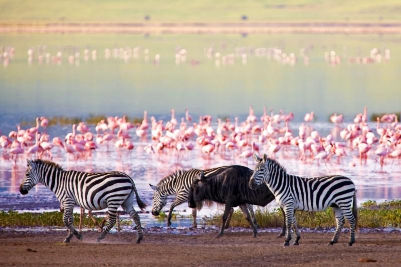 Lake-Manyara-National-Park-kilimanjaro-trip-safaris